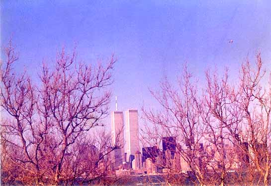 World Trade Centre, New York, in Winter (1996) by Roy Mathew